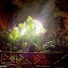Stairway to the Underworld by John  Kapusta