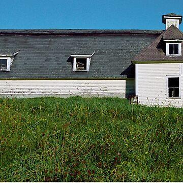 White Barn by srwdesign