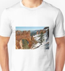 Canyon Window T-Shirt