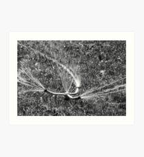 Sprinkler Art Print