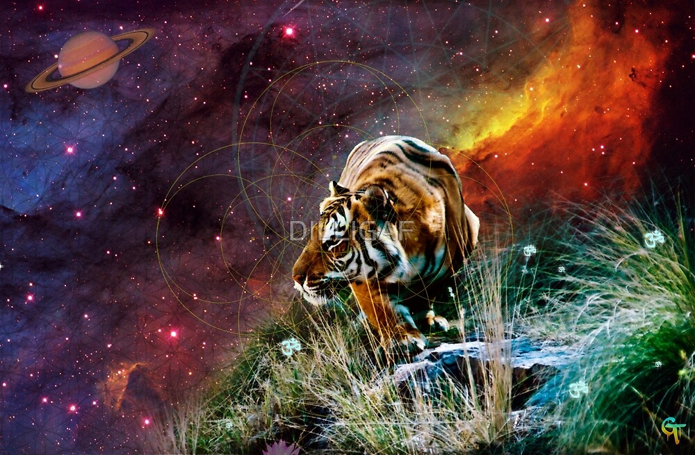 Cosmic Tigerscape by DILLIGAF