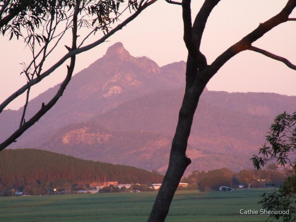 Dawn on Mt Warning by Cathie Sherwood
