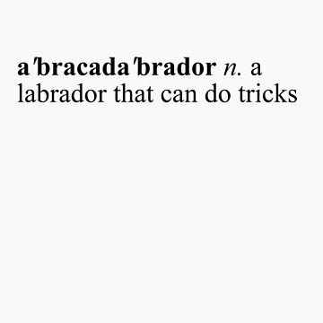 abracadabrador by VeriPunni