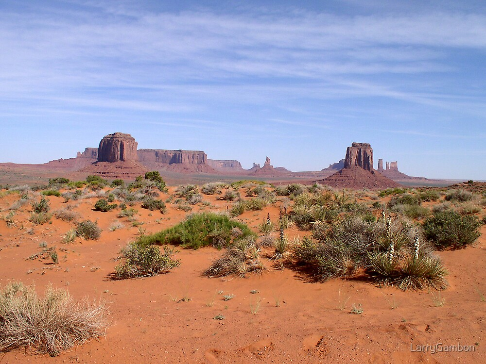 Monument Valley by LarryGambon