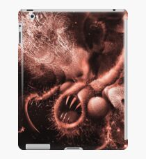 TIME AERIALS Squamafly Red iPad Case/Skin
