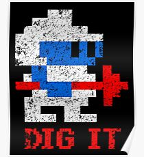 DIG IT Poster