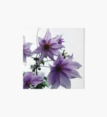Tree Dahlia Art Board