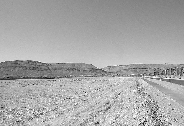 Las Vegas - Landscaped Desert by Will Edwards