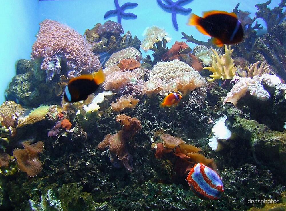 """""""Underwater Garden"""" by debsphotos"""