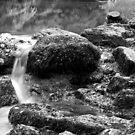 Wet Textured Rocks by kernuak