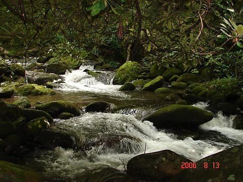 Mossy Rocks by danabee