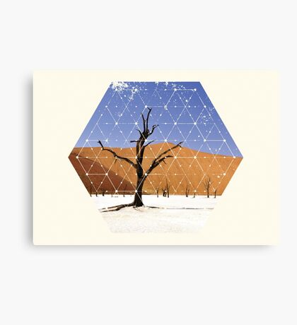Nature and Geometry - The Landscape Canvas Print