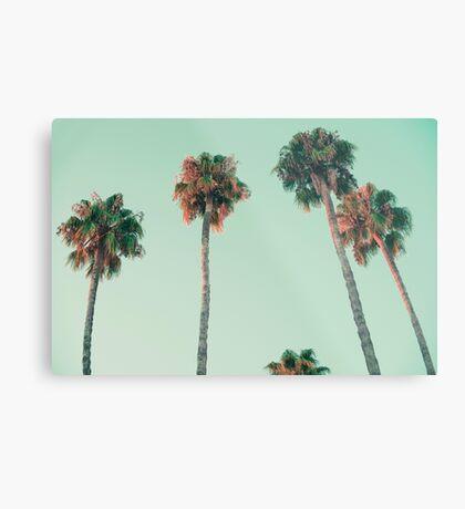 Palmen bei Sonnenuntergang Metallbild