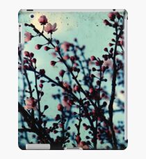 Spring Blossoms Through The Viewfinder - TTV iPad Case/Skin