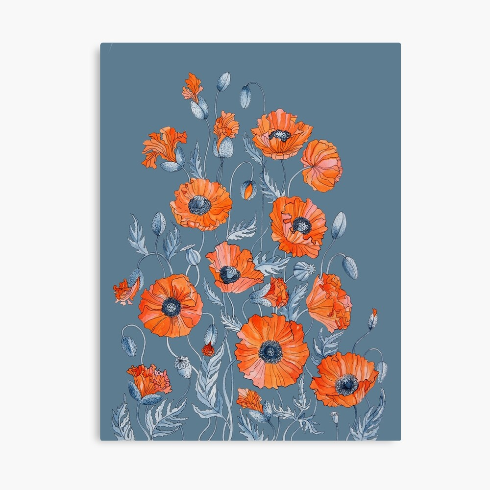 Poppies Floral Botanical art Canvas Print