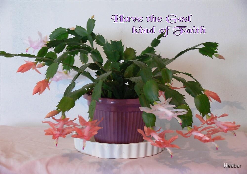Have the God kind of Faith !!! by Heabar