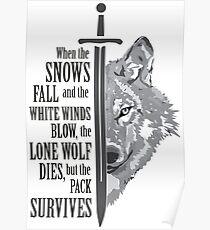 pack survives Poster