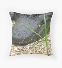 Toothy Grin Throw Pillow