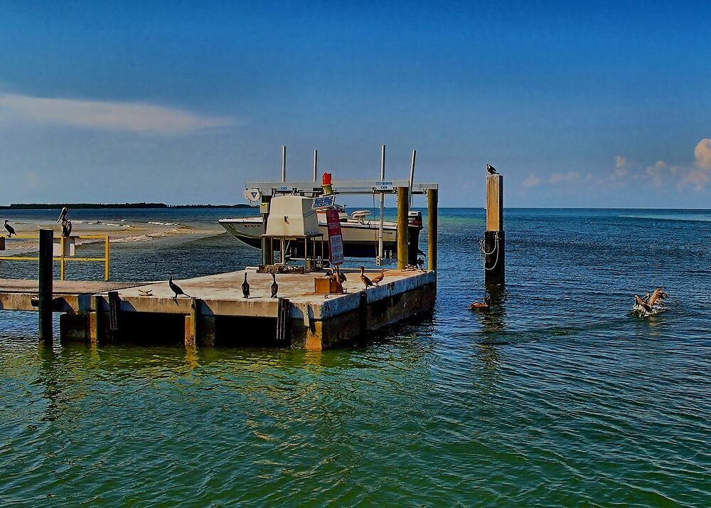 Boat Dock by TerryDavey