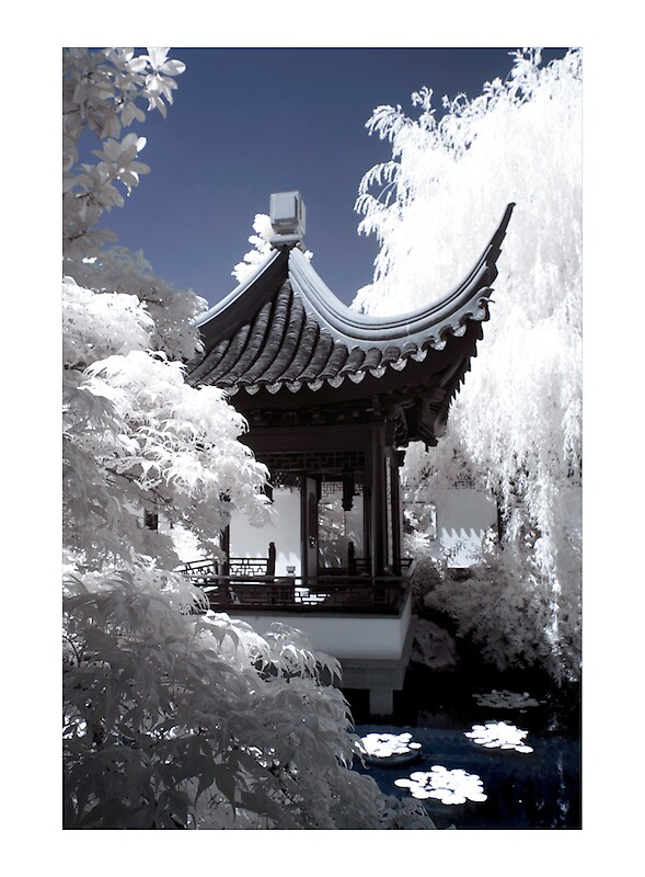 Classical Chinese Garden in Infrared by psychedelicmind