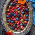Still life with Berries by alan shapiro