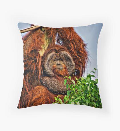 Big Fellow Throw Pillow