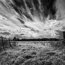 Sky Light by Peter Denniston