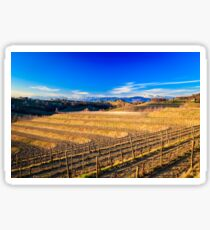 Sunset in the vineyards of Rosazzo Sticker