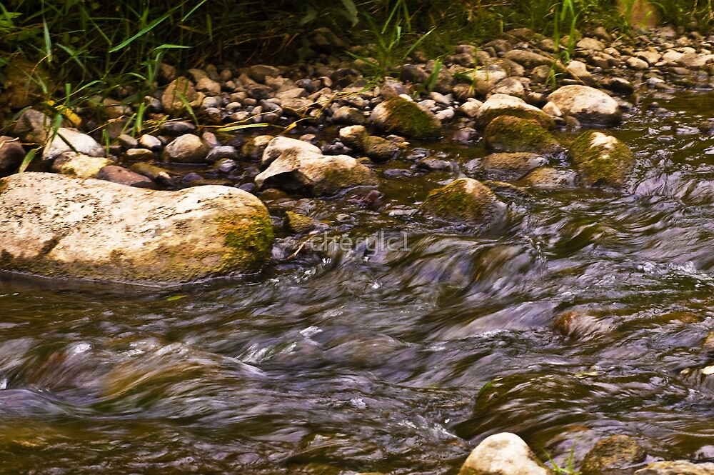 Babbling brook by cherylc1