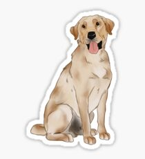 Yellow Labrador  Sticker