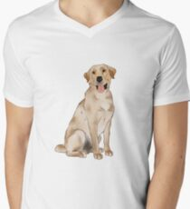 Yellow Labrador  Men's V-Neck T-Shirt