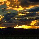Winter Sunset by GailD