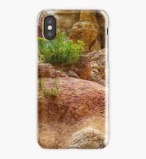 Geological Playground iPhone Case