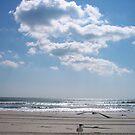 Ahh...the beach by Photography  by Jamye