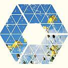 Nature and Geometry - Yellow Flowers by Denis Marsili