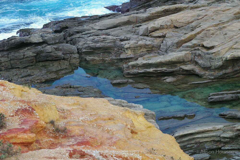 Bermagui Palette by Alison Howson