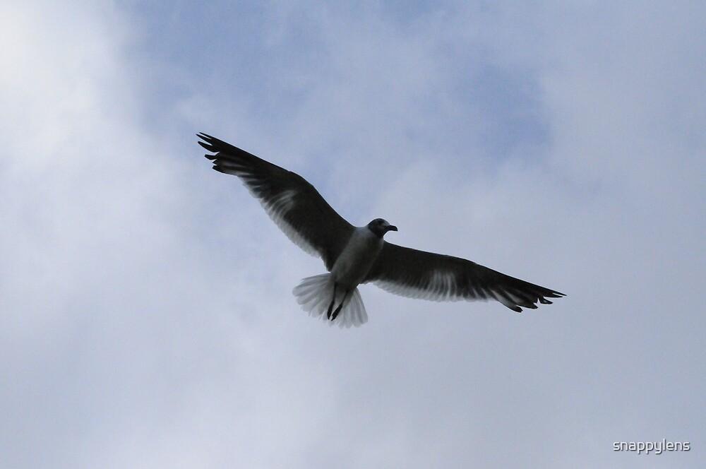 on flight by snappylens