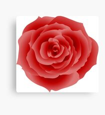 red rose flower Canvas Print