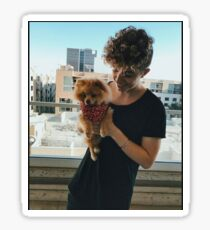 Jack Avery/ Why Don't We Sticker Sticker