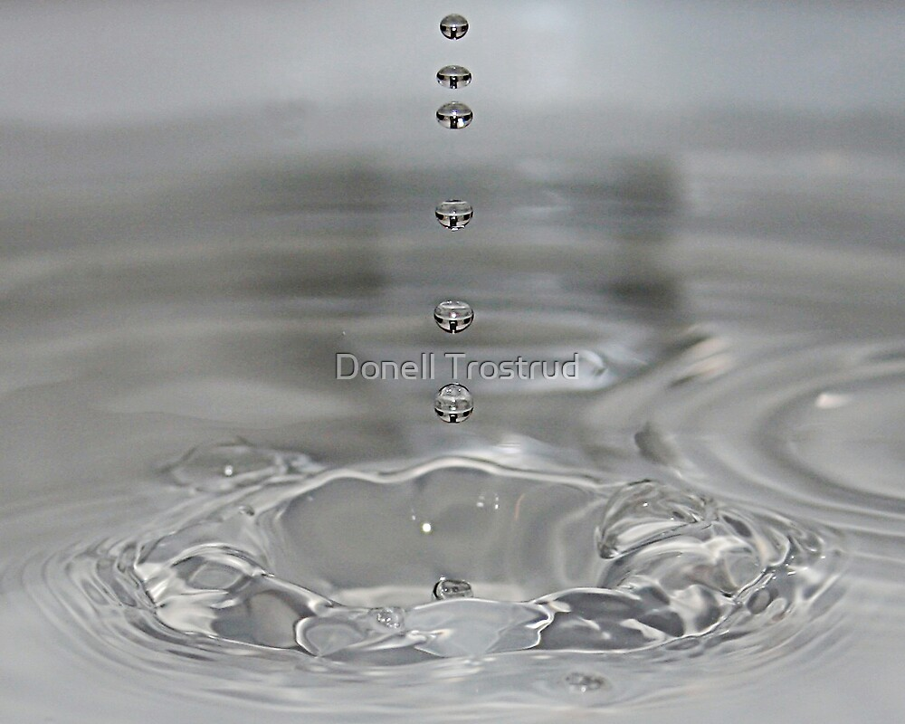 Silver Drops by Donell Trostrud