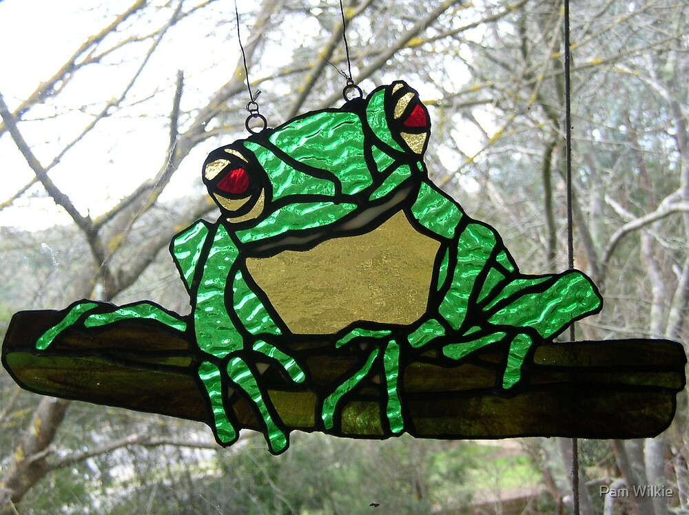 Red- Eyed Australian Tree Frog by Pam Wilkie