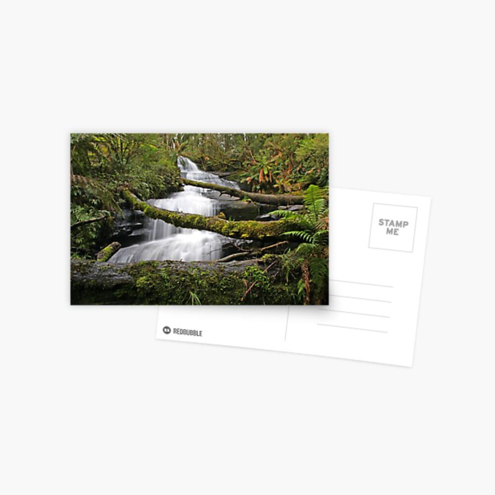 Triplet Falls, Otways, Australia Postcard
