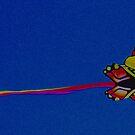 Kite by Judi Taylor