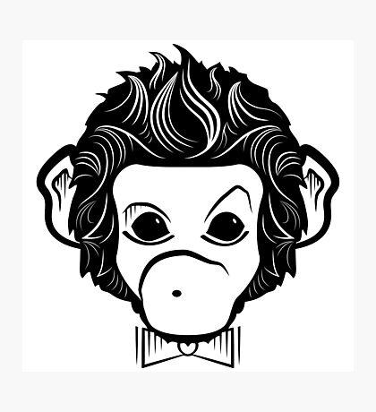 monkey identica Photographic Print