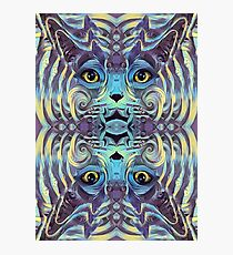 Catnip Psych (Electric Catnip) Photographic Print