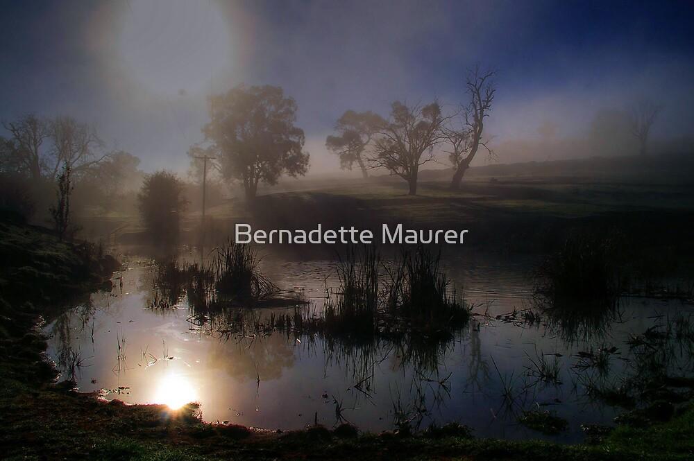 Wintery morning by Bernadette Maurer