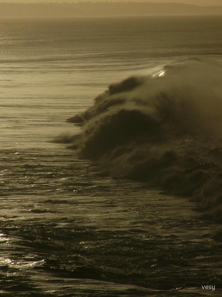 Solitary Wave by vesy