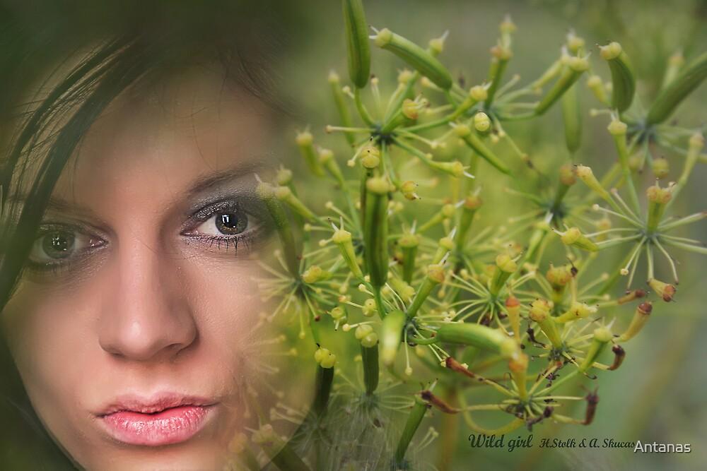 Wild Girl by Antanas