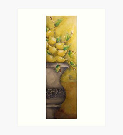 I Limoni 'Still Life' © Patricia Vannucci 2007 Art Print