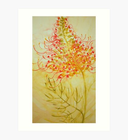 grevillea 'for the love of flowers' © 2007 patricia vannucci  Art Print